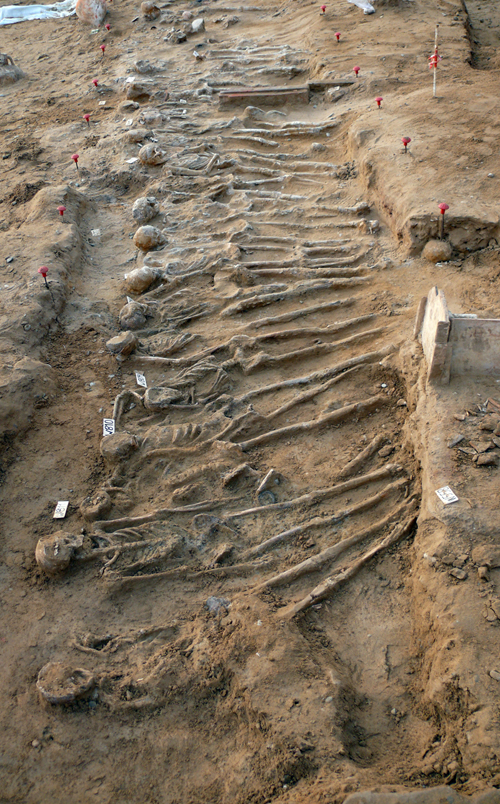 Fig. 2 - Fossa comune n. 2 di soldati caduti nella battaglia del 480 a.C.